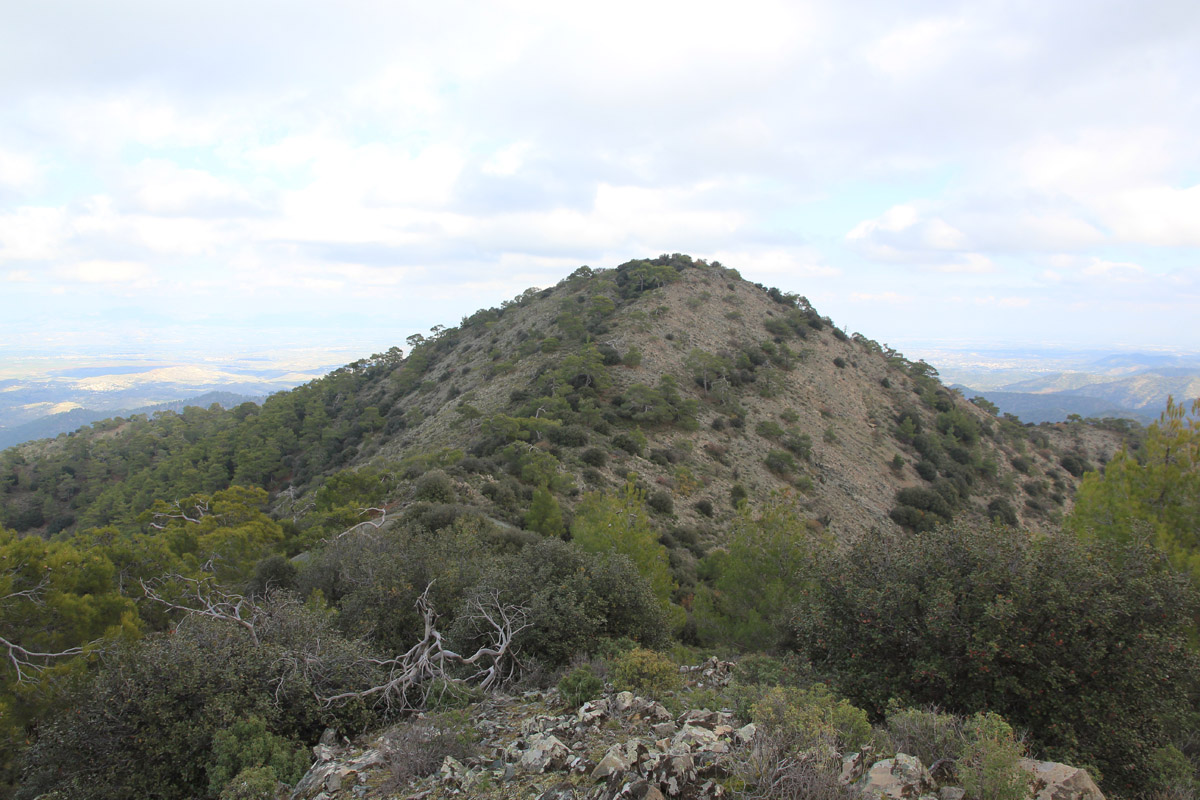Option 1 is to leave the trail here and hike uphill along the main ridge.  There is one small dip along the way d7f62a26f12