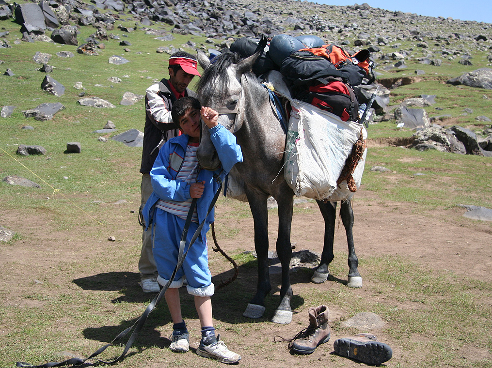 ARARAT Trip Report, August 4 - August 9, 2007